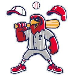baseball falcon mascot vector image