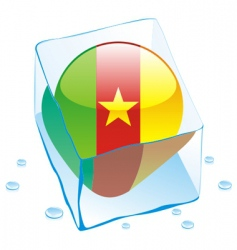 Cameroon flag vector image vector image