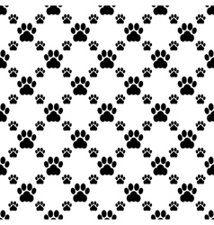 cat paw seamless vector image vector image