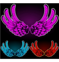 Colored wings vector