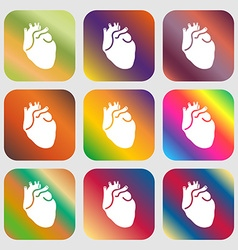 Human heart sign icon Nine buttons with bright vector image vector image
