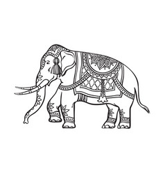 sketch indian decorated elephant vector image