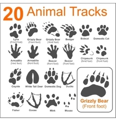 Animals tracks - set vector