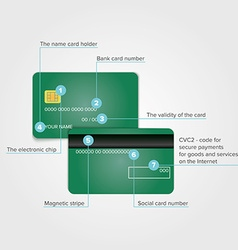 Detailed realistic green credit card elements vector