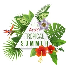 Tropical paper emblem with type design vector
