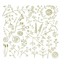 Field flowers and plants decoration collection vector