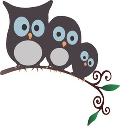 Three owls on a branch vector