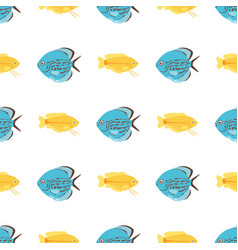 exotic tropical fish seamless pattern colors vector image vector image