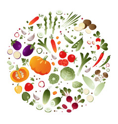 vegetables in the shape of a circle vector image vector image