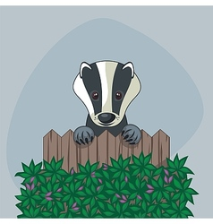 Cute badger vector