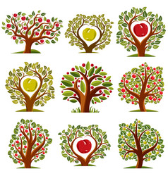 Art drawn trees with ripe apples harvest season vector