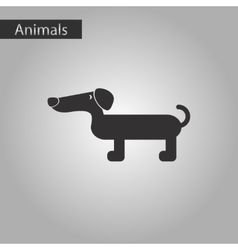 Black and white style icon dog dachshund vector