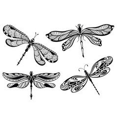 decorative dragonflies set vector image