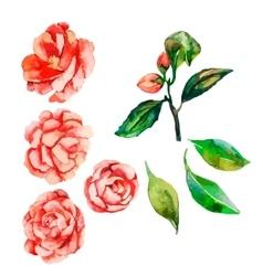 Flowers decorative flowerflowers vector
