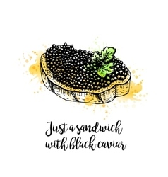 Watercolor hand drawn sandwich with black caviar vector