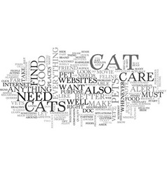 why do you need cat care websites text word cloud vector image vector image