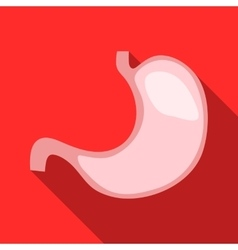 Stomach icon flat style vector