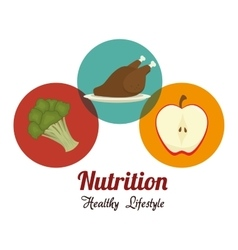 Food and nutrition vector