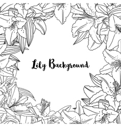 background with lily flowers and leaves vector image