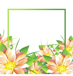 Summer bouquet of flowers vector image