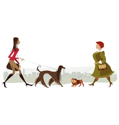 Walking dogs vector