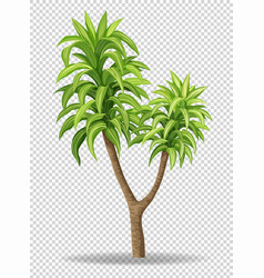 Green tree on transparent background vector