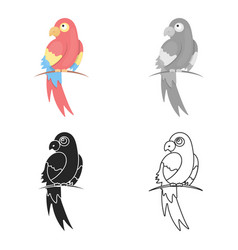 Parrot icon cartoon singe animal icon from the vector