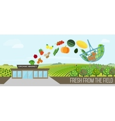 Organic food delivery vector image vector image