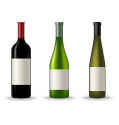 Collection of different wine bottles template vector