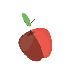 Apple fruit fresh shadow vector