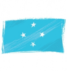 grunge Micronesia flag vector image vector image