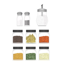 Ilustration of different type spices vector