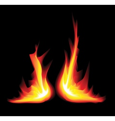 flame graphic vector image