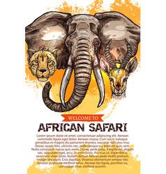 african safari hunting season club poster vector image vector image