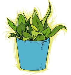 Fower in pot vector