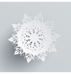 Snowflake isolated on silver realistic flake vector