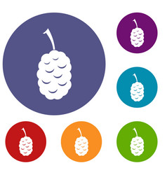 Fruit of mulberry icons set vector