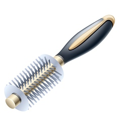 Hairbrush vector