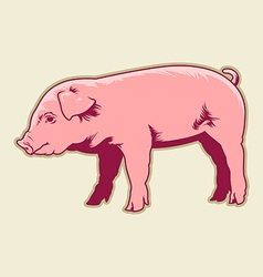 Cute little pig vector