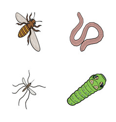 arthropods insect mosquito beeearth worm vector image vector image