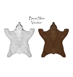 Big brown and white bear pelt hunting trophy vector