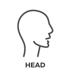 Head thin line icon vector