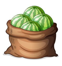 A sack of fresh watermelons vector