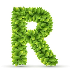 Letter r alphabet of green leaves vector