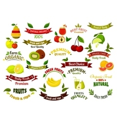 Ripe farm fruits design elements vector image vector image