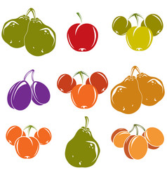 set of colorful different ripe sweet fruits vector image vector image