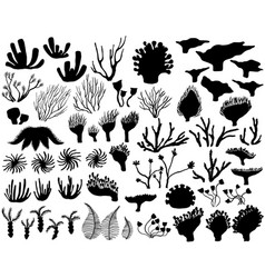 set of marine life silhouettes vector image