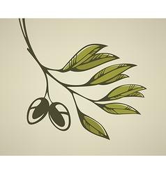 gleen olive background vector image