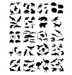Big set of australian animals silhouettes vector