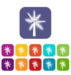 Big palm tree icons set vector